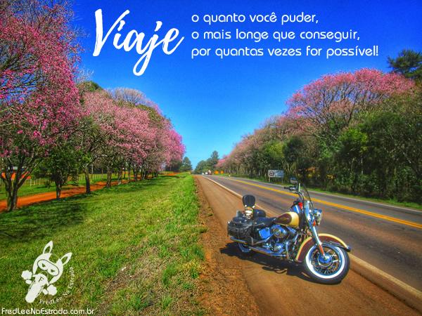 Viaje o quanto você puder, o mais longe que conseguir, por quantas vezes for possível! | FredLee Na Estrada