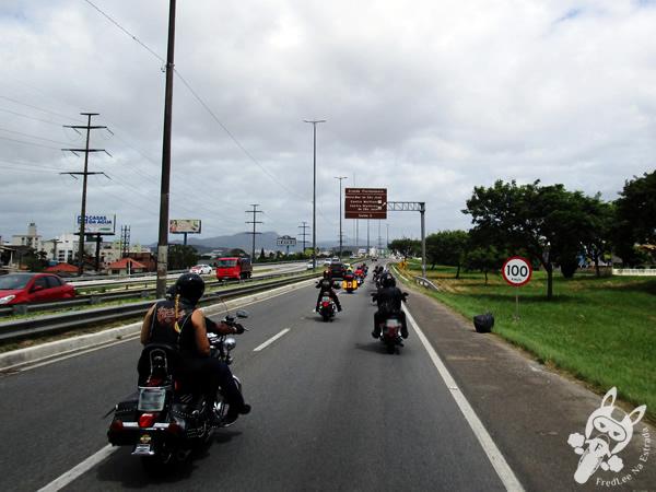 Rodovia BR-101   FredLee Na Estrada