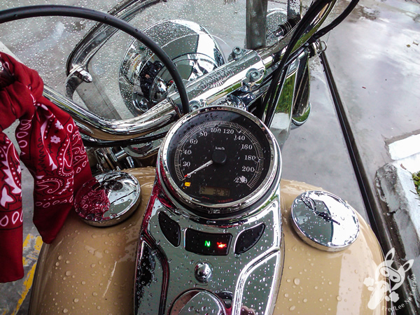 Harley-Davidson Heritage Softail Classic na chuva | FredLee Na Estrada