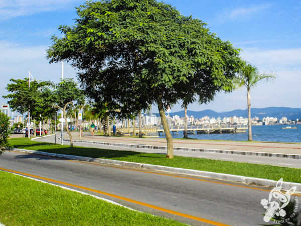 Avenida Beira-Mar Norte | Florianópolis - SC | FredLee Na Estrada