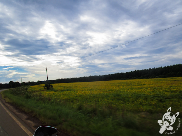 Estrada de acesso a Irineópolis - SC | FredLee Na Estrada