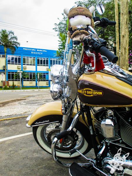 Prefeitura Municipal de Biguaçu - SC