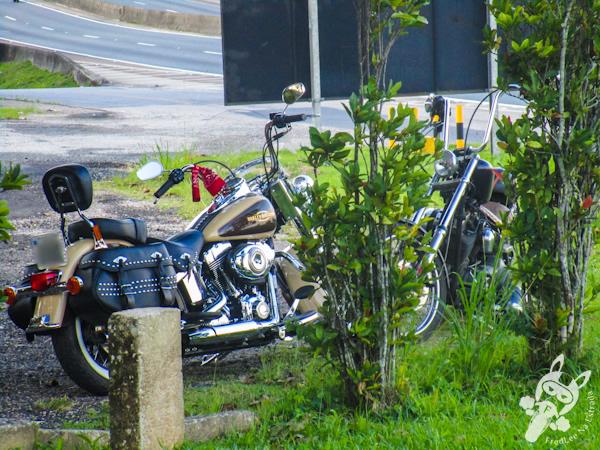 Harley-Davidson Softail 1600cc e Harley-Davidson Heritage Softail Classic