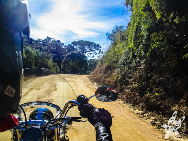 Harley-Davidson Heritage Softail na estrada de terra - Rancho Queimado - SC