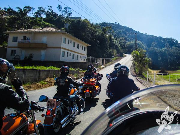 Estrada de acesso ao Santuário Nossa Senhora do Bom Socorro | Nova Trento - SC | FredLee Na Estrada