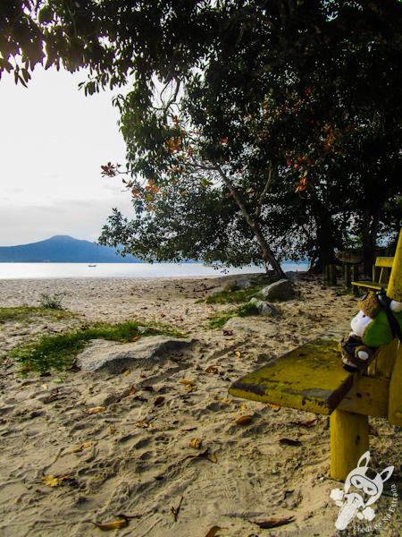 Praia da Daniela - Florianópolis - SC