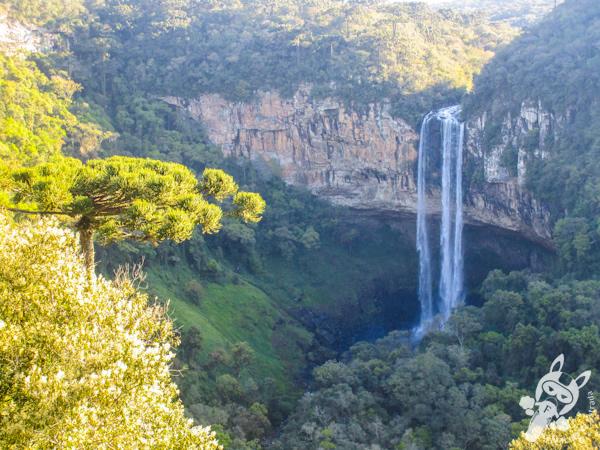 Cascata do Caracol - Bondinhos Aéreos Parques da Serra | Canela - RS | FredLee Na Estrada