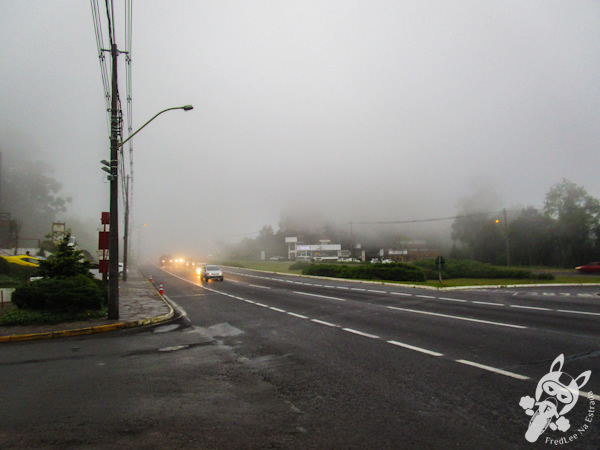 Avenida das Hortênsias - Gramado - RS