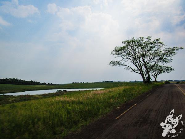 Estrada de acesso ao Santuário do Caaró | Caibaté - RS | FredLee Na Estrada