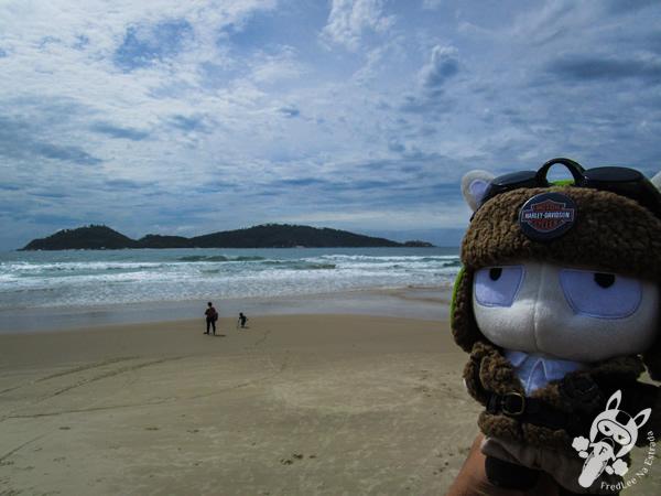 Praia do Campeche - Florianópolis - SC