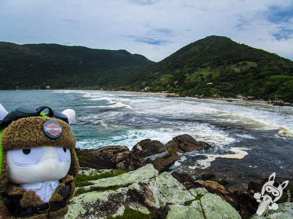 Praia do Matadeiro - Florianópolis - SC