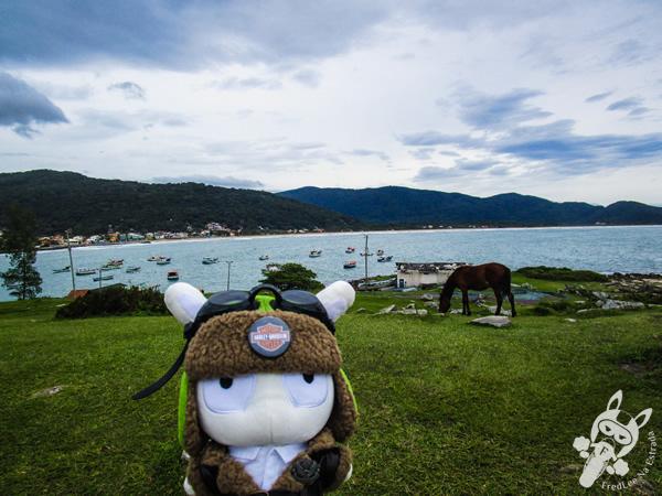 Ponta das Campanhas - Florianópolis - SC