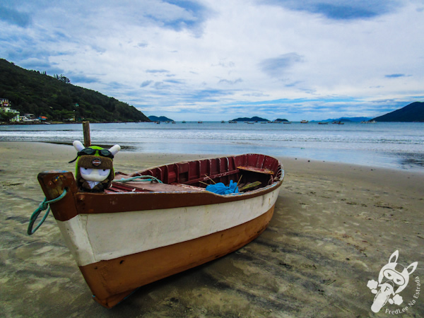 Pântano Sul - Florianópolis - SC