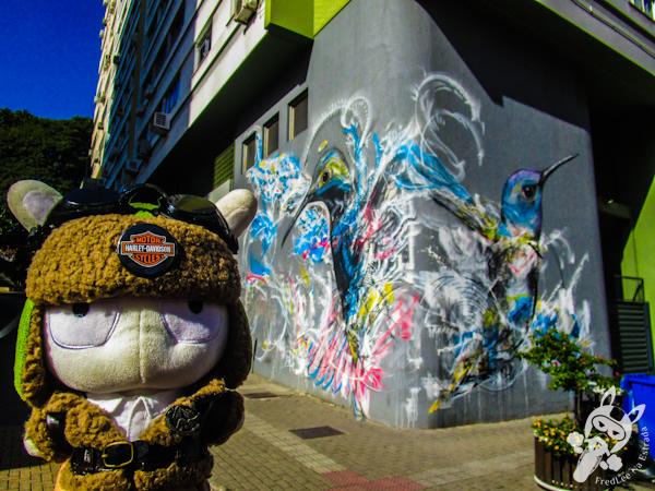 Intervenção urbana - Florianópolis - SC