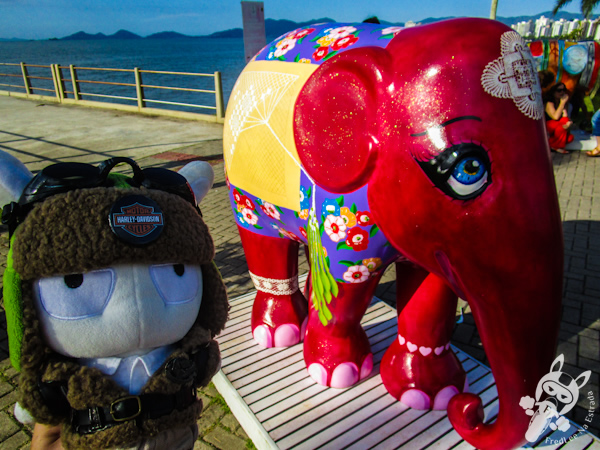 Rendeira Rita, por Joel Pacheco - Elephant Parade - Florianópolis - SC