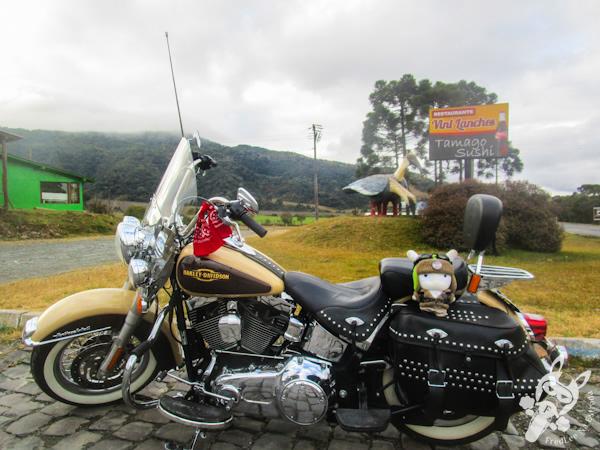 Monumento a Curucaca - Bom Retiro - SC   FredLee Na Estrada