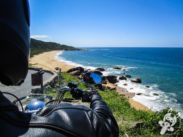 Rodovia Interpraias | Balneário Camboriú - SC