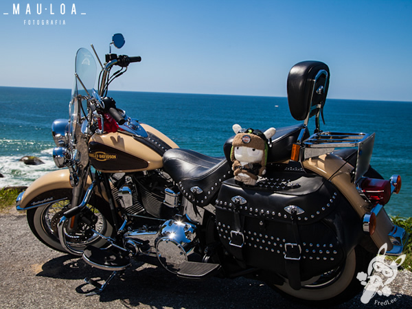 Bagageiro (grelha) na Harley-Davidson Heritage Softail Classic