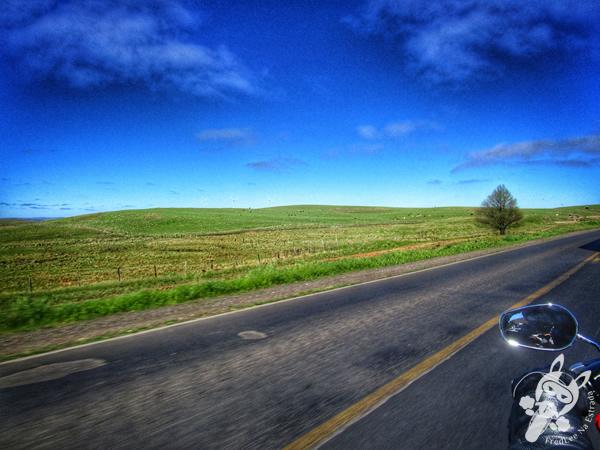 Casa do Turista | Palmas - PR | FredLee na Estrada
