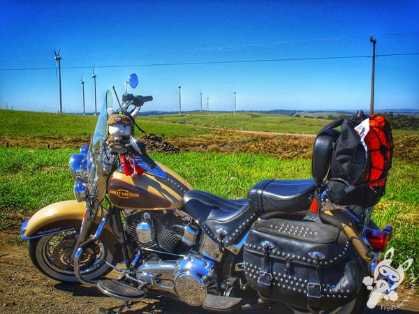 Realeza - PR | FredLee na Estrada