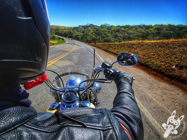 Lago municipal | Realeza - PR | FredLee na Estrada