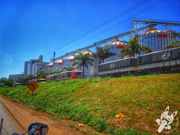 Rodovia BR-277   FredLee na Estrada