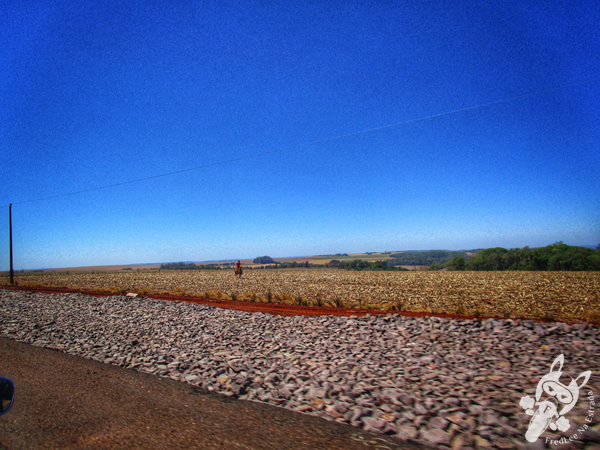 Rodovia BR-277 | Matelândia - PR | FredLee na Estrada