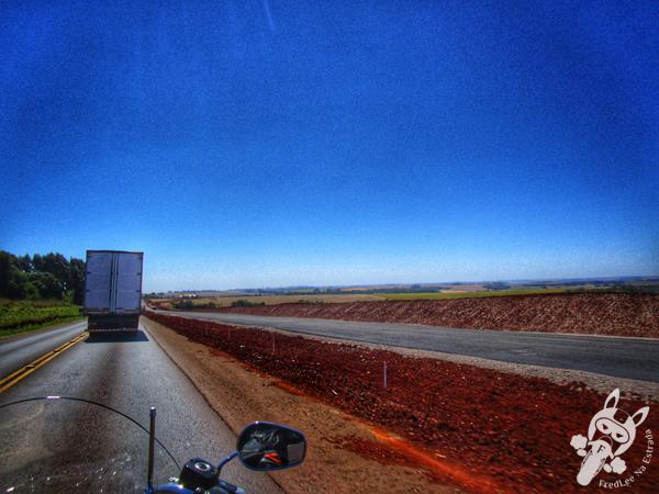 Garden Matelândia - PR   FredLee na Estrada