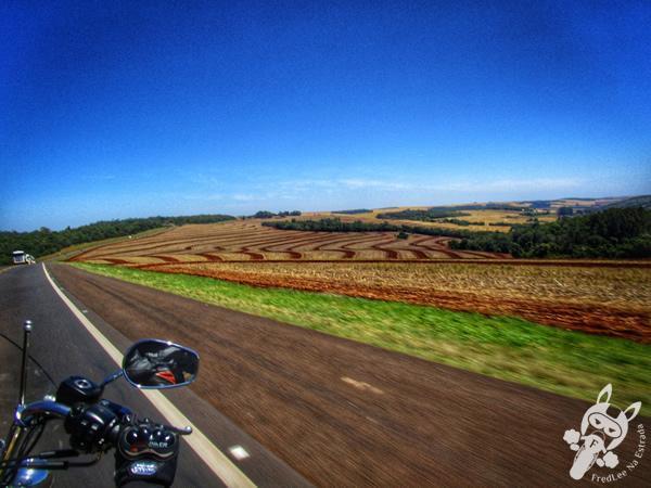 Frimesa | Rodovia BR-277 | FredLee na Estrada