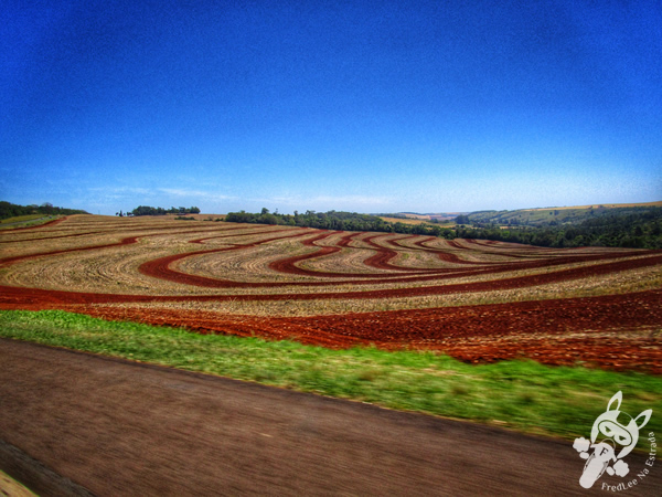 Rodovia BR-277 | FredLee na Estrada