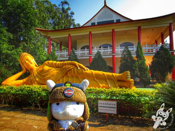 Visita Panorâmica | Itaipu Binacional | Foz do Iguaçu - PR