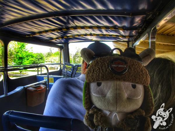 Carro Elétrico | Itaipu Binacional | Foz do Iguaçu - PR