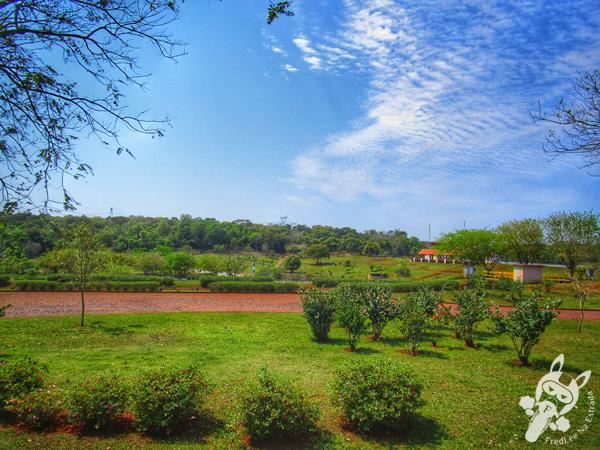 Catedral Nossa Senhora de Guadalupe | Foz do Iguaçu - PR