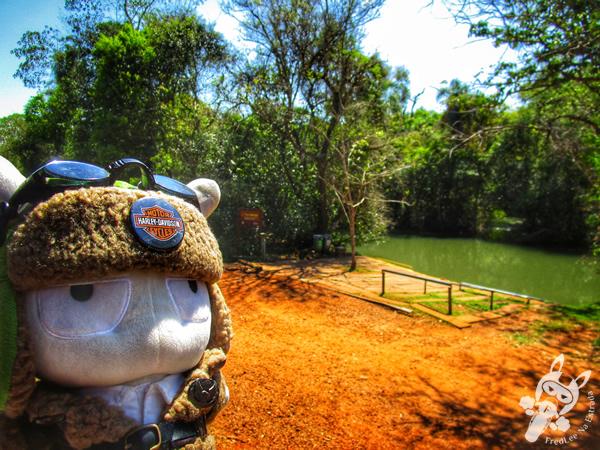 Cataratas del Iguazú - Parque Nacional Iguazú | Puerto Iguazú - Misiones - Argentina | FredLee Na Estrada