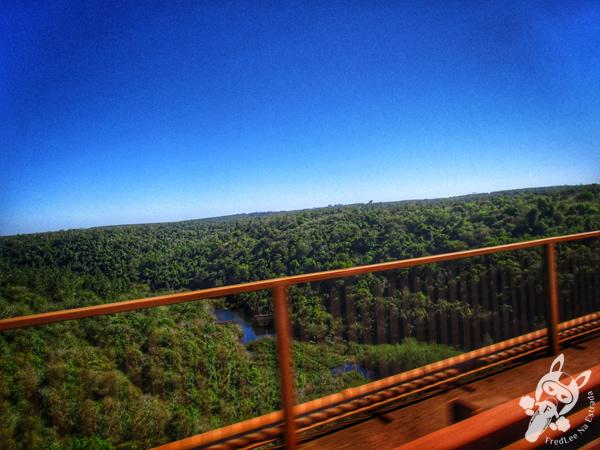 Ruta nacional 12 | Montecarlo - Misiones - Argentina