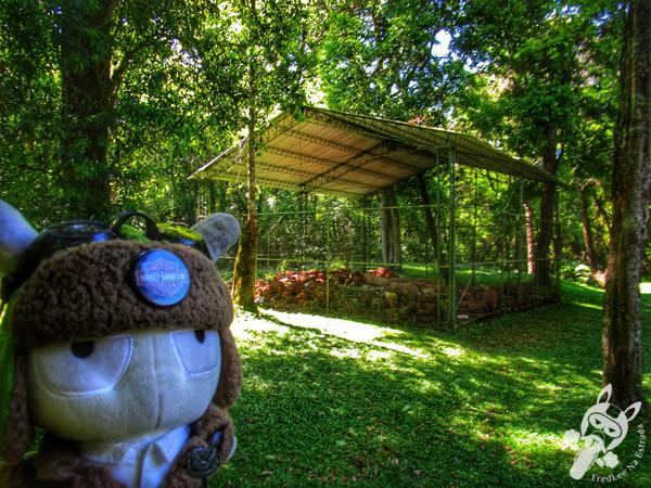 Ruta Nacional 12   FredLee Na Estrada