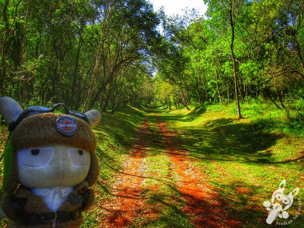 Ruta 10 | FredLee Na Estrada