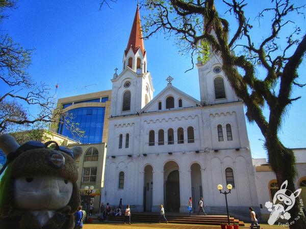 Ponte internacional San Roque González de la Santa Cruz