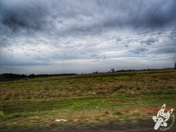 Paróquia São Francisco de Borja | São Borja - RS