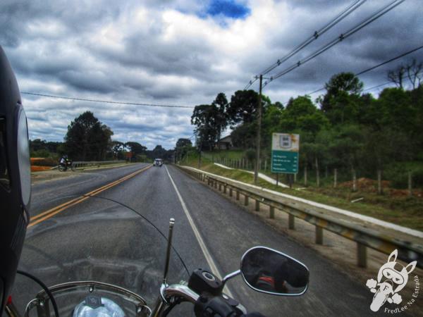 Pórtico de Campo Alegre - SC | FredLee Na Estrada