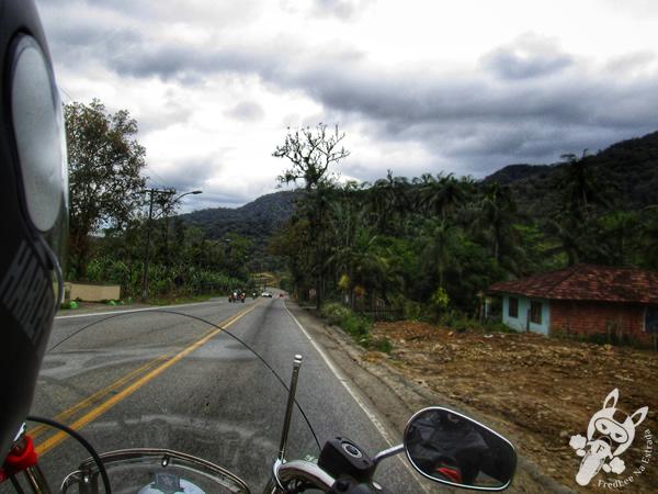 Ponte Hercílio Luz | Florianópolis - SC