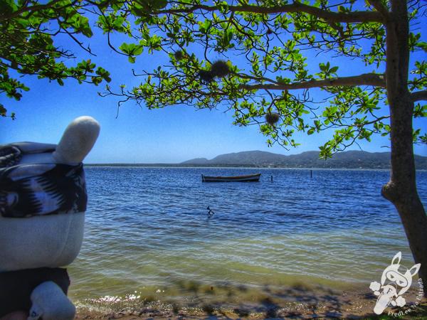 Canto dos Araçás - Florianópolis - SC