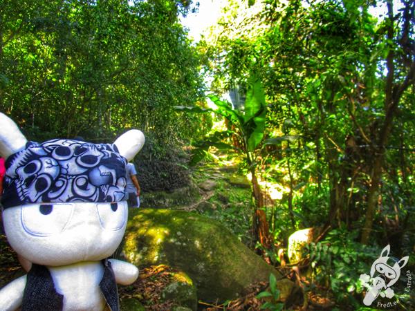 Costa da Lagoa | Florianópolis - SC