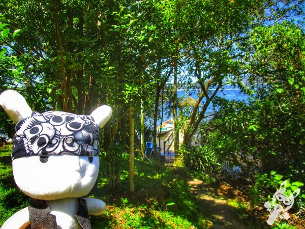 Cachoeira da Costa da Lagoa | Florianópolis - SC
