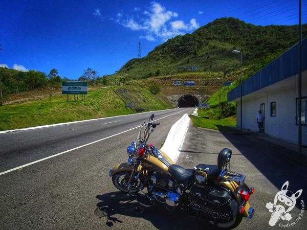 Túnel do Morro Agudo | Paulo Lopes - SC