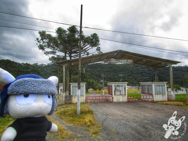 Plantação de maçãs | Urubici - SC