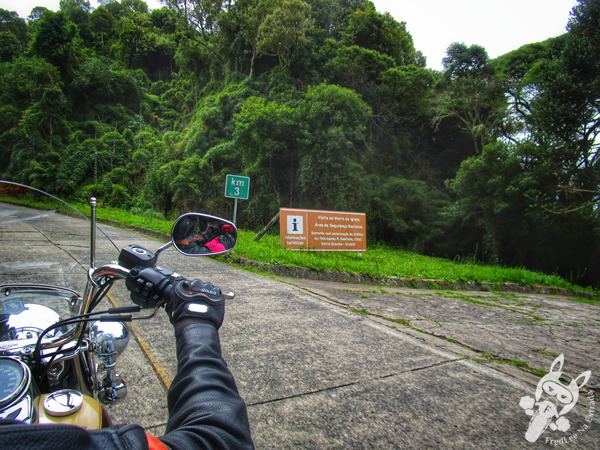 Morro da Igreja - Parque Nacional de São Joaquim | Urubici - SC