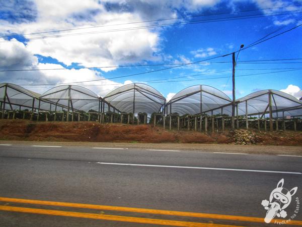 Restaurante e Lancheria Levale - Ipê - RS | FredLee Na Estrada