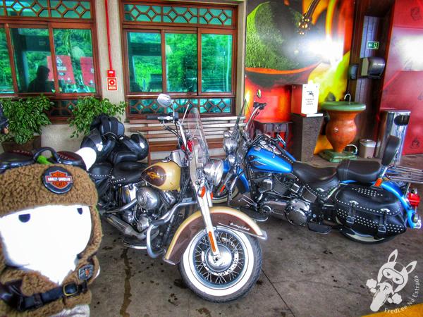 Parque Histórico Municipal Jorge Kuhn   Picada Café - RS