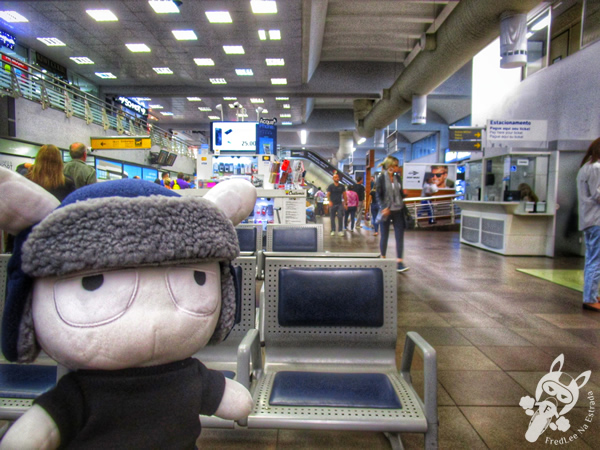 Aeroporto Internacional de Florianópolis - SC | FredLee Na Estrada